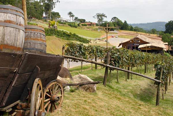 0901-turismo-rota-monte-cuco